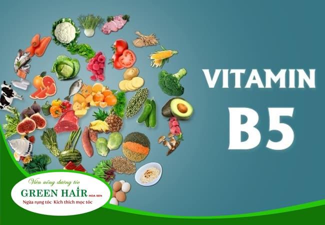 Vitamin B5 - Vitamin Có Nhiều Công Dụng & Phong Phú Trong Tự Nhiên